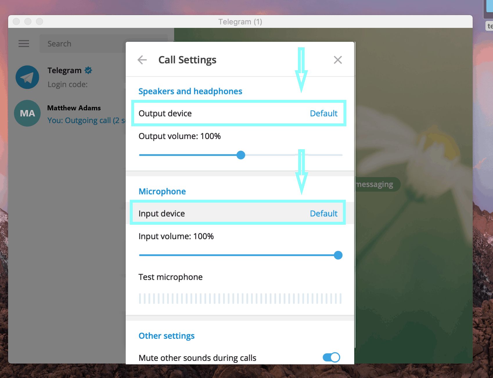 Telegram Desktop microphone and speaker settings