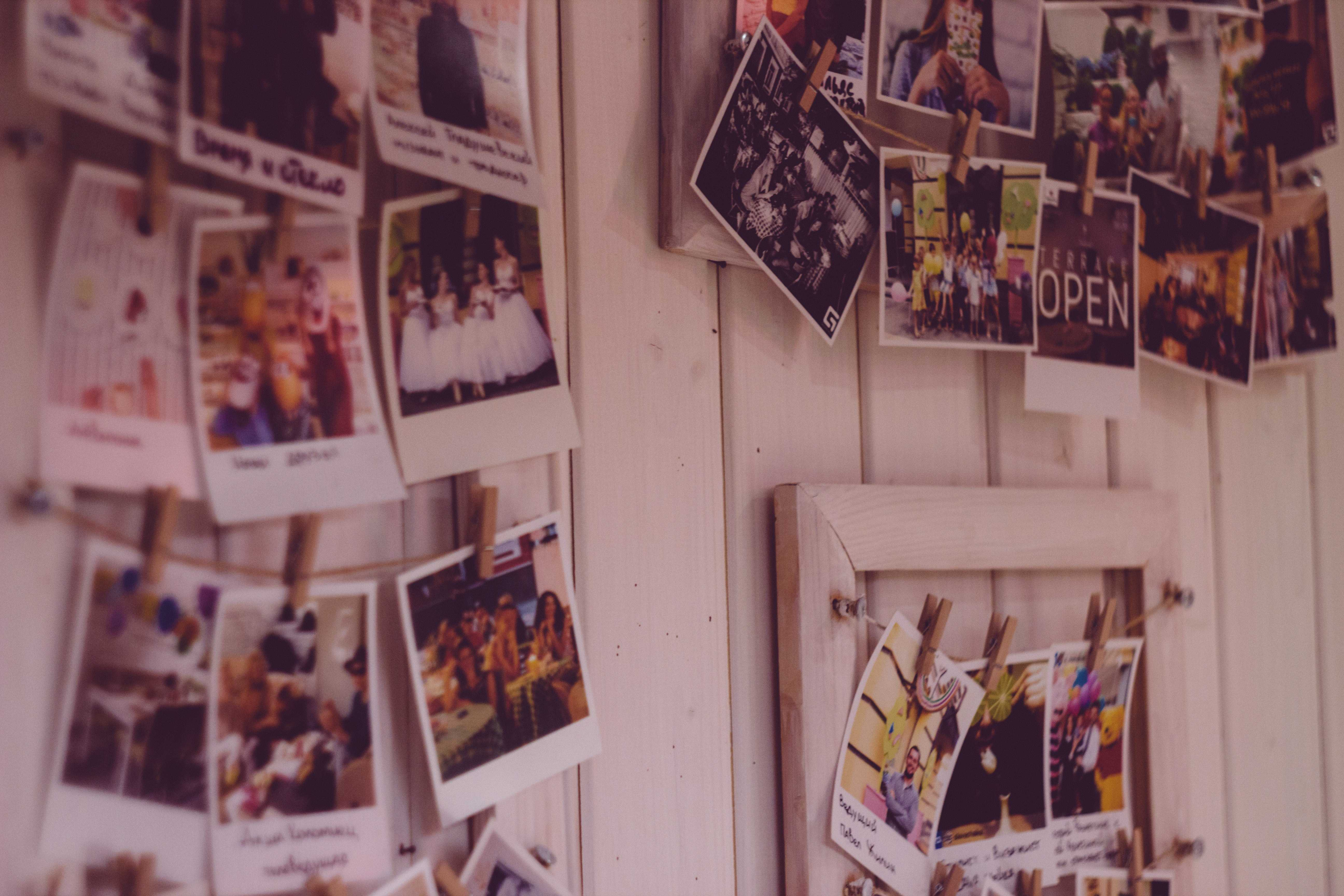 many photographs pinned to a wall